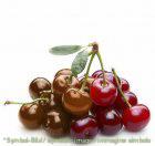 Cheri, Schoko Kirsch / Cioccolato Ciliegia - Dose 6 kg - Klassische Eispasten Milcheispasten