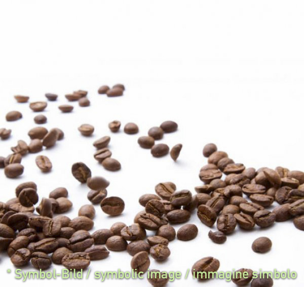 coffee / caffé - tin 2,5 kg - Classic ice milk paste