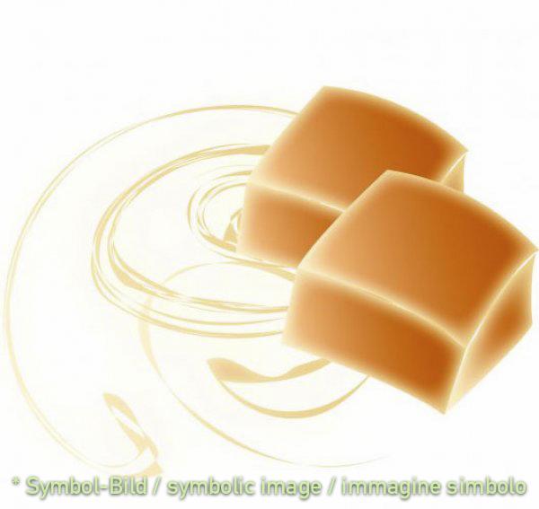 Karamel / caramello - Dose 6,5 kg - Klassische Eispasten Milcheispasten