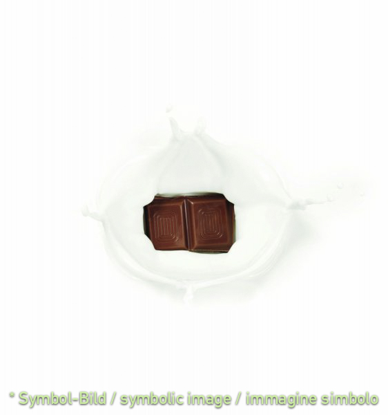 """Stracciatella cioccolata """"Exquisit"""" - Dose 12 kg - Klassische Eispasten Milcheispasten"""
