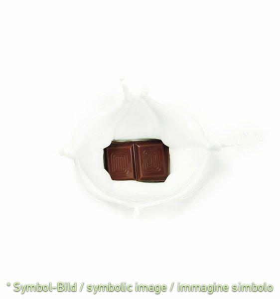 """Stracciatella """"Exquisit"""" - Dose 12 kg - Klassische Eispasten Milcheispasten"""