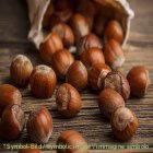 Haselnuss grob* / nocciola con granella fine* - Dose 5,5 kg - Klassische Eispasten Milcheispasten