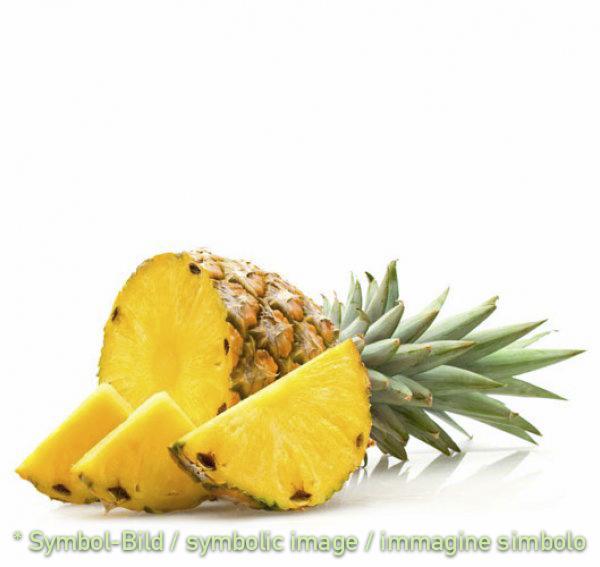 pineapple / ananas -  tin 3,25 kg - Fruit Pastes