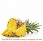 Ananas - Dose 3,25 kg - Frucht Eispasten