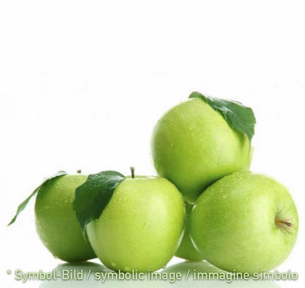 apple / mela - Dose 3,25 kg - Fruit Pastes