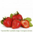 Erdbeere / fragola -  Dose 6,5 kg - Frucht Eispasten