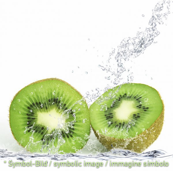 kiwi - tin  3,25 kg - Fruit Pastes