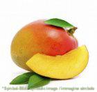 Mango - Dose 3,25 kg - Frucht Eispasten