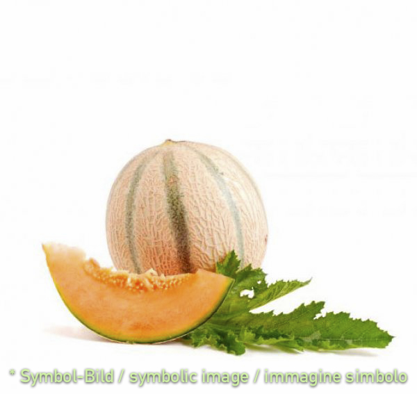 melon / melone - tin 3,25 kg - Fruit Pastes