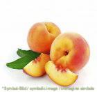 Pfirsich / pesca - Dose 3,25 kg - Frucht Eispasten