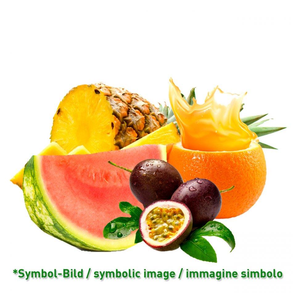 Tropical - Dose 3,25 kg - Frucht Eispasten
