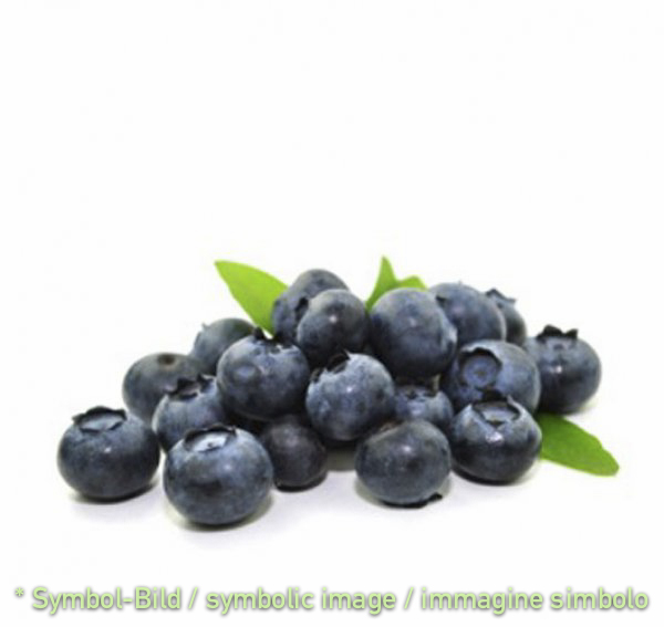blueberry / Mirtillo  12% - glass 2,3 kg *ONLY RESERVATION