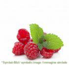 Himbeere / Lampone - Glas 2,3 kg - Früchte in Alkohol