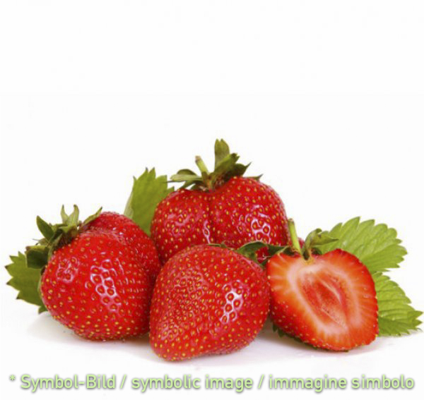 strawberry / fragola - tin 3 kg - Super Top Variegates