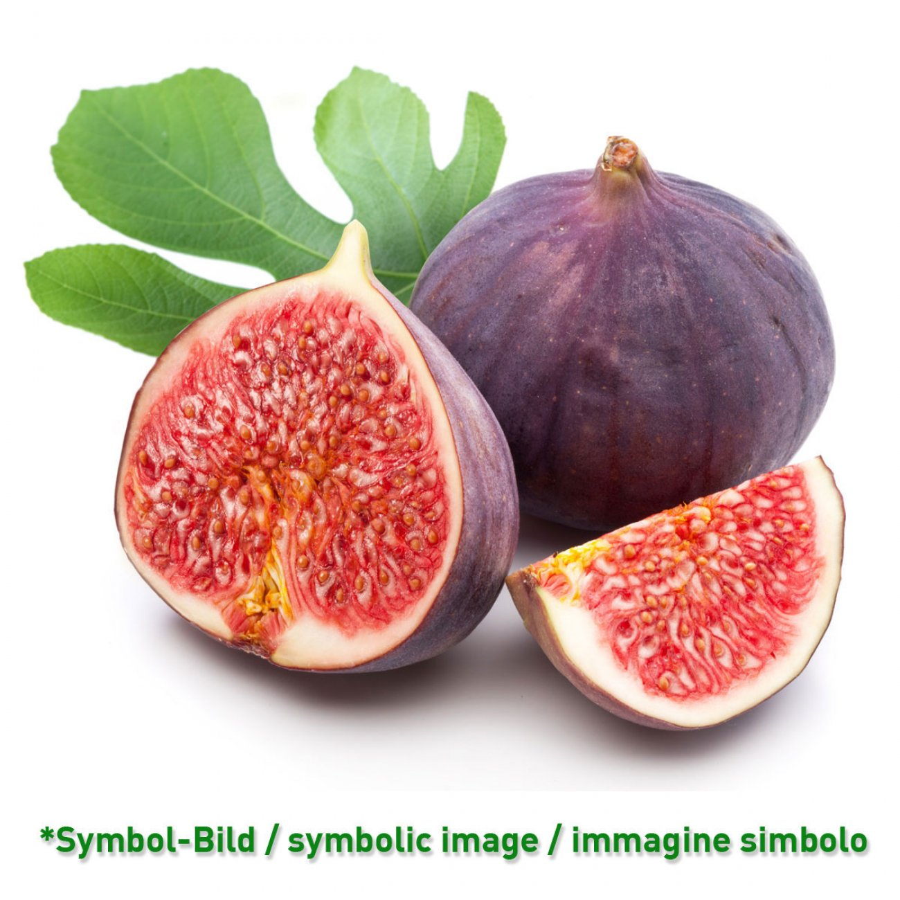 fig / fico - tin 3,25 kg - Super Top Variegates