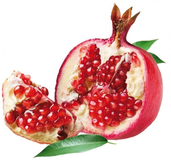 pomegranate / melograno - tin 3,25 kg - Super Top Variegates