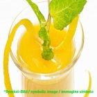 Lemon Fresh (Zitrone / limones) - Dose 3,25 kg - Super Top Marmorierer ** NUR AUF VORBESTELLUNG!!!