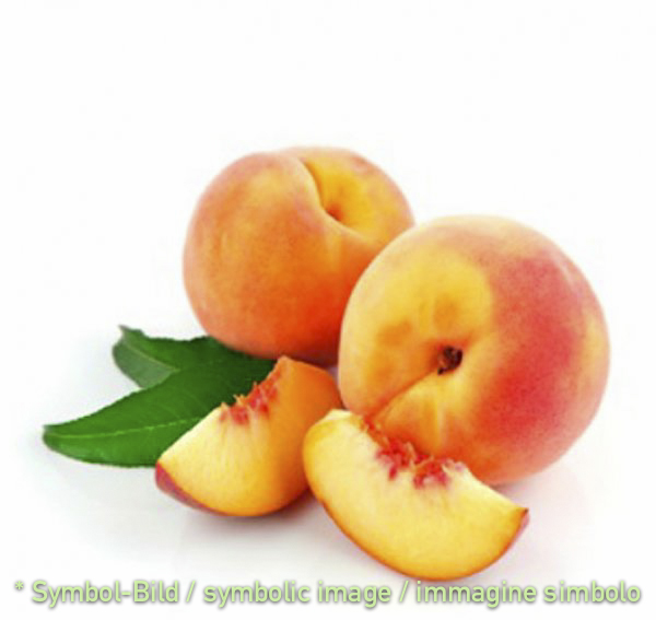 peach / pesca - tin 3,25 kg - Super Top Variegates