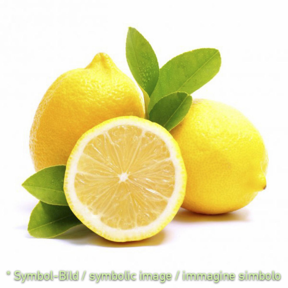Limoncina - Beutel 2 kg - Eispulver Speiseeispulver