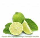 Pronto Limette / pronto lime - Beutel 1,35 kg