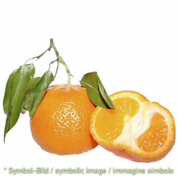 Pronto Mandarine / pronto mandarino - Beutel 1,35 kg
