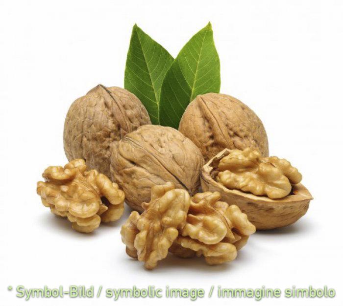 half walnut kernels / noci dimezzate - tin 1,8 kg - Ice cream decoration garnish