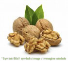 half walnut kernels / noci dimezzate - tin 1,8 kg - Ice cream decoration garnish
