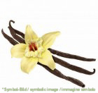"vanilla beans ""tahitensis"" white, crystallized - box 1 kg !! daily rate !!"
