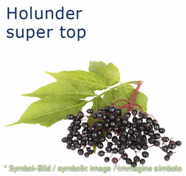 Holunder / sambuco - Flasche 1 kg - Super Top Marmorierer