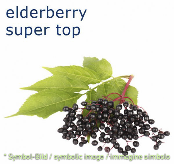 elderberry / sambuco - bottle 1 kg - Super Top Variegates