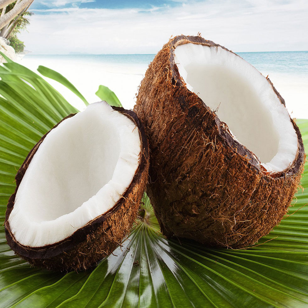 Cocco Caraibo - Beutel 2 kg - Speiseeispulver