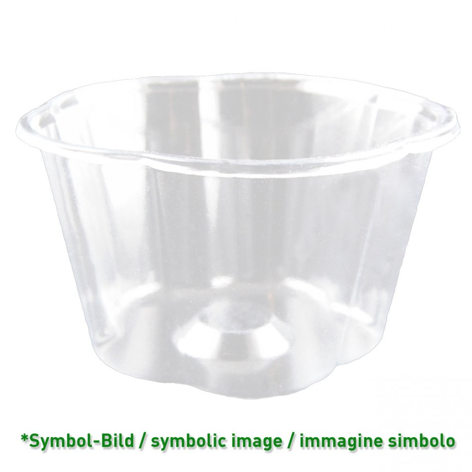flower cup 550 - biodegradable Ice cream cup PLA / 550ccm / 600 pieces