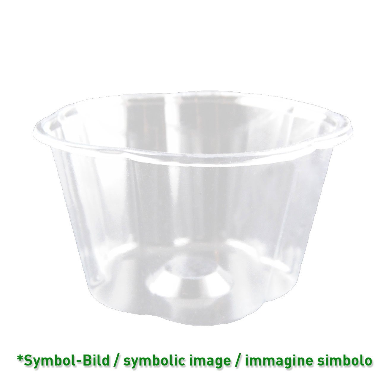 biodegradable Ice cream cup / 170 ccm / 1000 pieces - Ice cup bio PLA