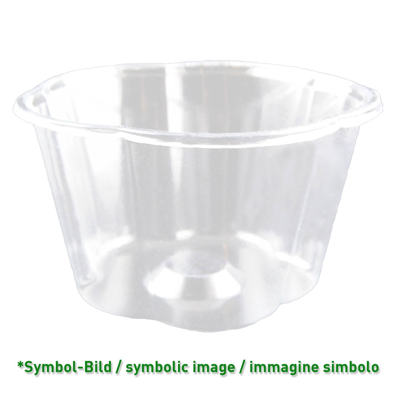 biodegradable Ice cream cup / 210 ccm / 1000 pieces - Ice cup PLA