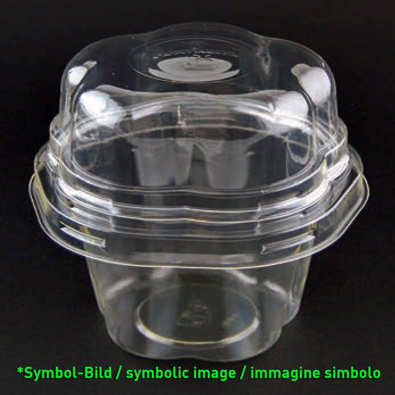 Flower Cup Deckel - biologisch abbaubarer Eisbecherdeckel aus PLA  / 200 Stück